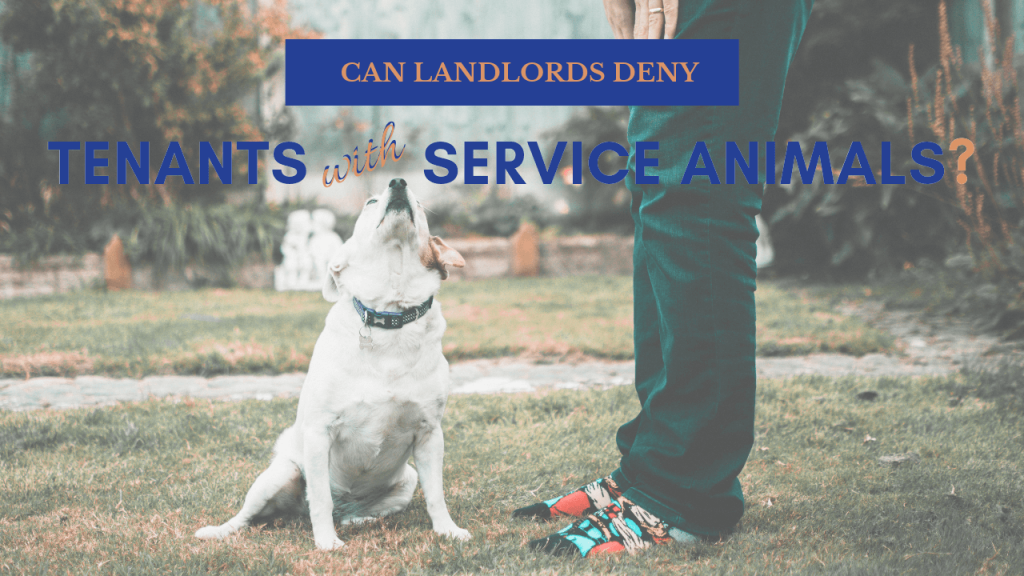 Can Landlords Deny Tenants with Service Animals - Article Banner