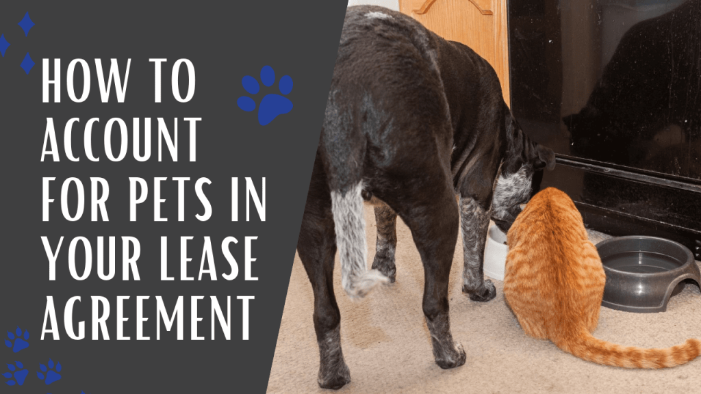 How to Account for Pets in Your Lease Agreement